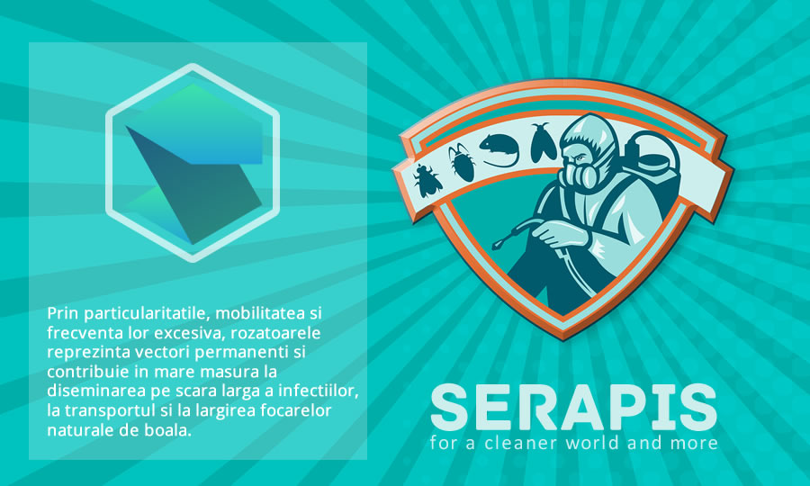 serapis2