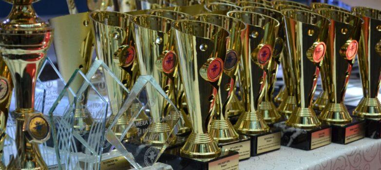 Al unsprezecelea premiu consecutiv pentru Excelență în Afaceri